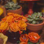 Festa Mexicana - Ju Paes